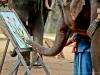 Elephant Painting 1